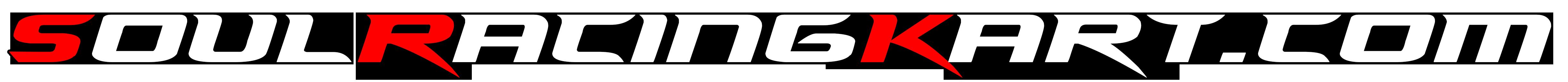 Soul Racing Kart – SRK – La comunidad del Karting 4T